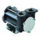 Насос для дизельного топлива BP 3000/12V
